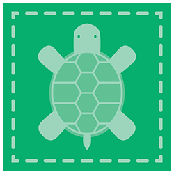 icon green turtle
