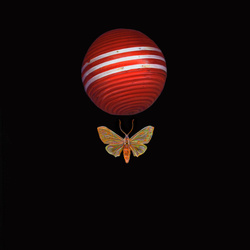 Moth Ball[comma] Red