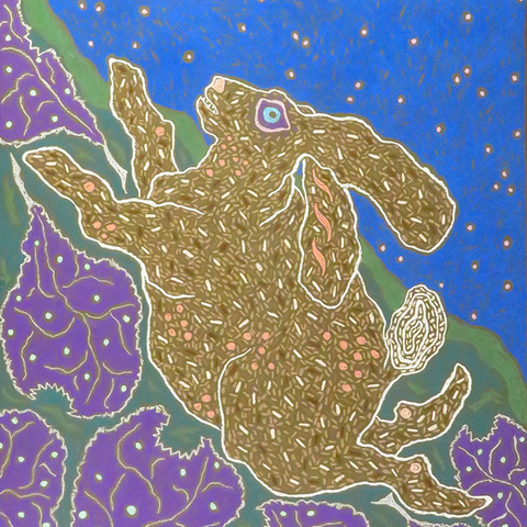 Purple Cabbage Crazed Rabbit